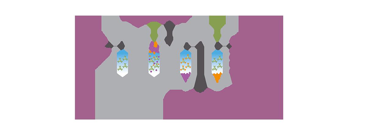 Immunoaffinity